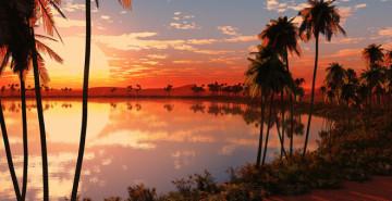 oasis shabat